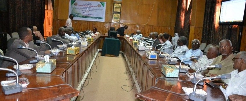 Recommendation on Establishment of Environmental Information Centre in Coordination with Universities of Gezira and Khartoum